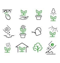 Line sprout and plant growing icons set vector image