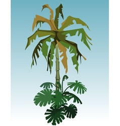 Cartoon coconut tree palm and tropical plant vector