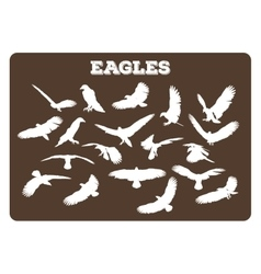 Eagles In Various Poses vector image