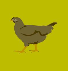 In flat style hen vector