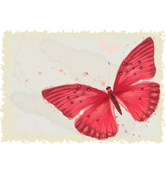 Red butterfly vector