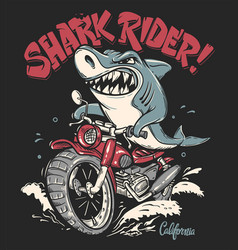 shark rider on motorcycle t-shirt design vector image