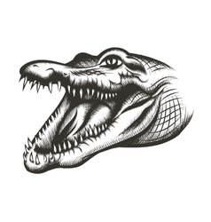 Crocodile head black vector