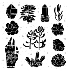 Isolated black silhouettes vector image vector image