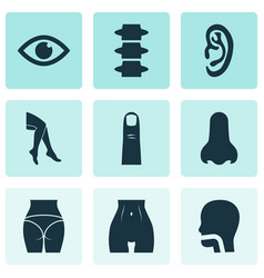 Part icons set with belly butt oral cavity and vector