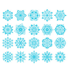 snowflakes winter christmas flake snowflake vector image