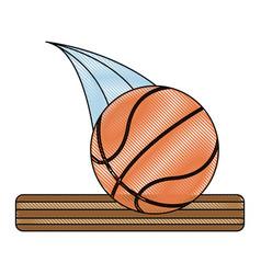 sport basketball ball vector image
