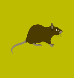 In flat style rat vector