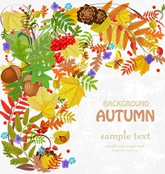 Autumn leaf pattern for your design vector