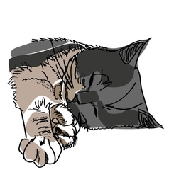 drawing of a sleeping cat vector image