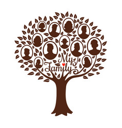 Genealogical family tree vector