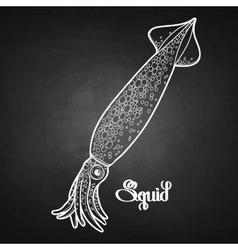 Graphic squid vector image