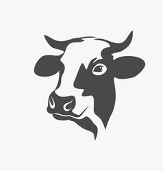 Holstein cow portrait stylized symbol vector