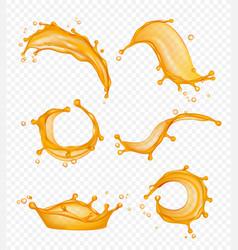 juice splashes liquid fresh fruits drops vector image