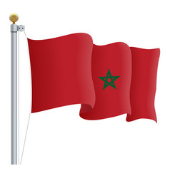 waving morocco flag isolated on a white background vector image