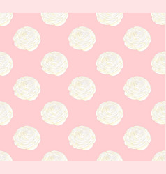 white ranunculus on pink pastel background vector image