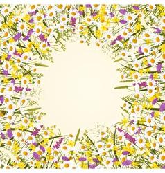 Wild flower frame vector image vector image