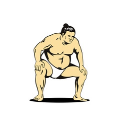 Japanese Sumo Wrestler vector image