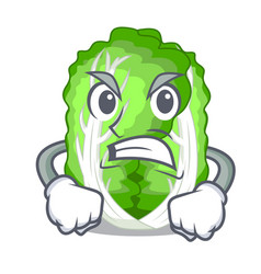 Angry cartoon fresh chinese cabbage vegetable in vector