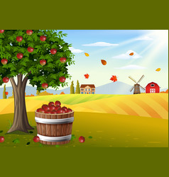 Apple tree and basket of apples in farm landscape vector