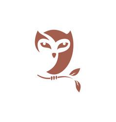 brown owl logo icon concept vector image