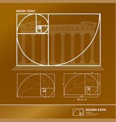 golden ratio for creative design vector image
