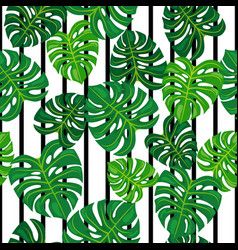 Green leaves on black and white background vector