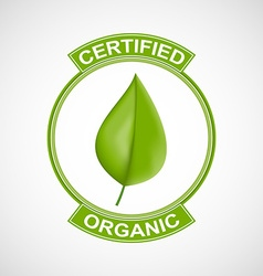 Label or logo with a green leaf for natural vector image