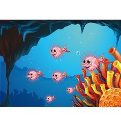 A school of puffer fishes inside the sea cave vector