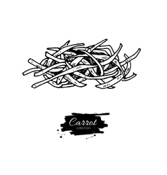 Carrot sliced pieces hand drawn vector