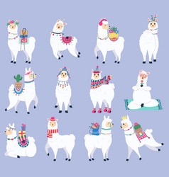 cute llama mexican fluffy alpaca peru wildlife vector image