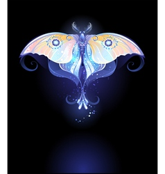 Moonlight Butterfly vector