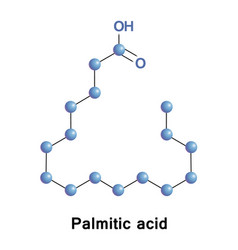 Palmitic or hexadecanoic acid vector