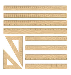 rulers wood icon set vector image