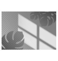 Shadow overlay realistic window light with shade vector
