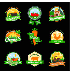 Stevia and organic food label set farm fresh vector