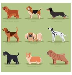 dog flat icons set vector image