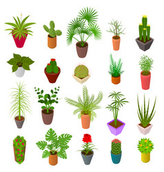 green plants in pot set icons 3d isometric view vector image vector image