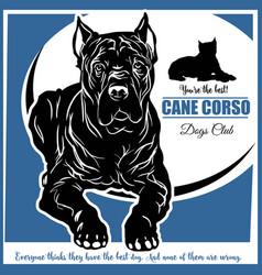 Cane corso - for t-shirt logo vector