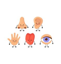 Five human senses organs kawaii characters set vector