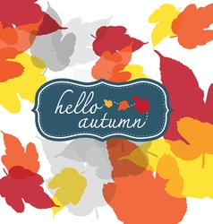 Hello autumn square vector