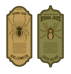 spider juice legs halloween bottle label vector image