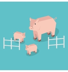 Isometric Pig with Piglets Isolated vector image