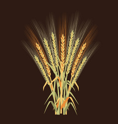ripe rye set - vector image vector image