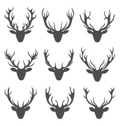 set deer heads collection stag horns isolated on vector image vector image