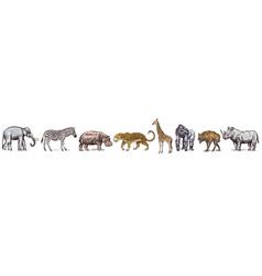 african animals rhinoceros elephant hippopotamus vector image