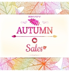 Big autumn sale EPS 10 vector image