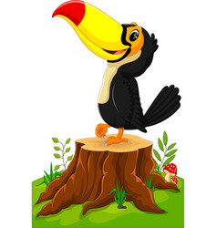 cartoon happy toucan on tree stump vector image