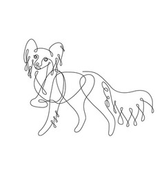 chihuahua dog one line drawing vector image