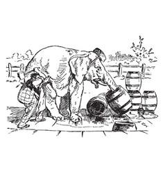 elephant drinking vintage vector image